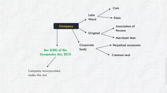 Financial Statements of Companies course image
