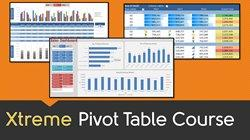 Excel with Excel Pivot Tables: The Comprehensive Guide course image