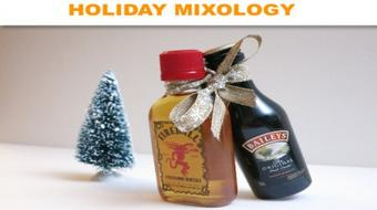 DIY Create your own fun cocktail shots to give as holiday gifts course image