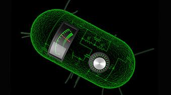 Principles of Synthetic Biology course image