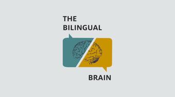 The Bilingual Brain course image