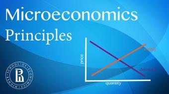 Основы микроэкономики (Microeconomics Principles) course image