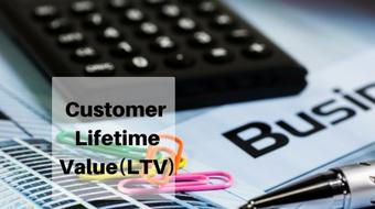 Calculate Customer Lifetime Value(LTV) of Your Business To Boost ROI course image