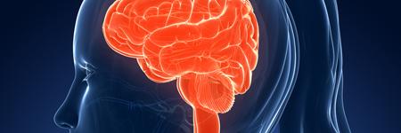 Certificate in Brain Health course image