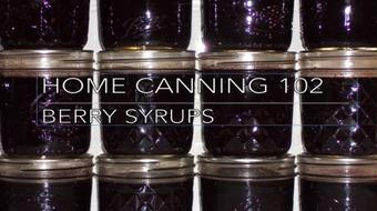 Home Canning 102: Berry Syrups, starting with Elderberries course image