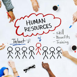 Diploma in Human Resources course image