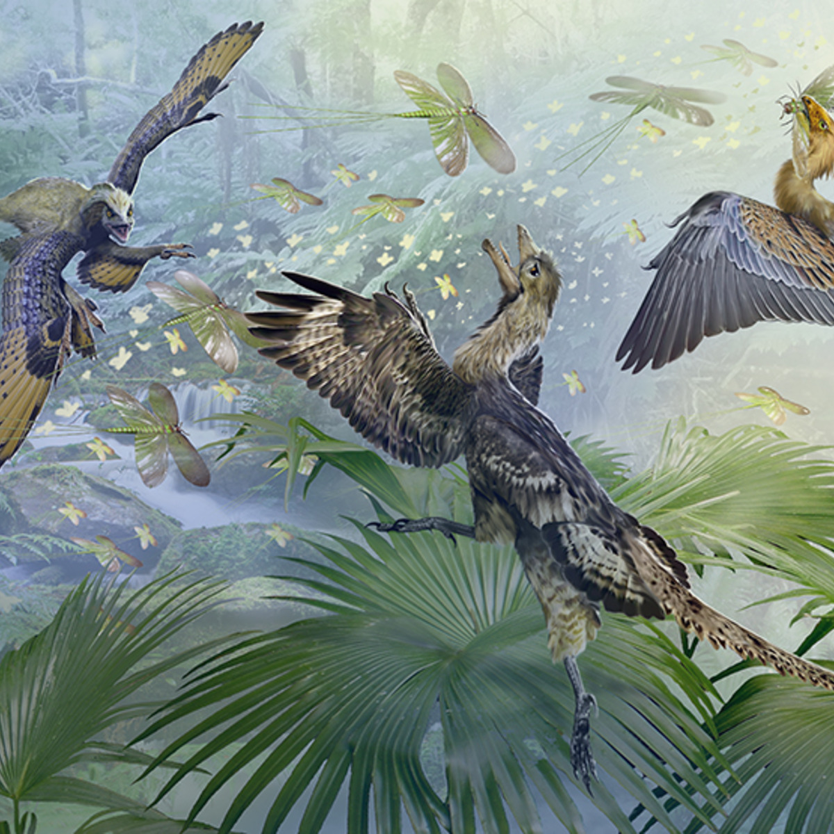evolution an examination of the relation of dinosaurs and birds Theory of evolution edit  the connection between dinosaurs and birds has been established  the questions raised about the relation of evolution to the origins.
