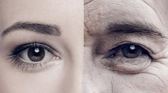 Why Do We Age? The Molecular Mechanisms of Ageing course image
