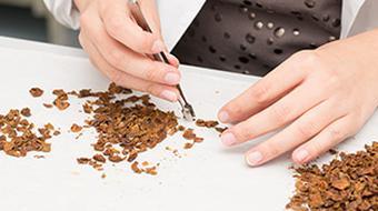 Introducción a la ciencia de BIOmateriales course image