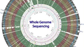 Whole genome sequencing of bacterial genomes - tools and applications course image