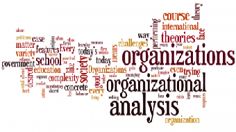 Organizational Analysis (Self-Paced) course image
