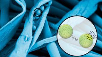 Microcápsulas: Aplicación y Caracterización course image