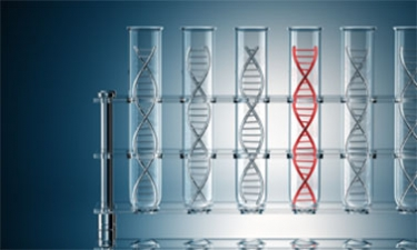 DNA Sequences: Alignments and Analysis course image