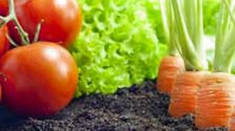 Introduction to Growing Organic Food Sustainably course image