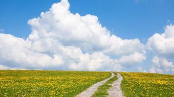 Building Portal Sites on SAP Cloud Platform course image