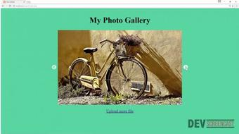 Create a Simple Photo Gallery with Dropzonejs, Slick and PHP course image