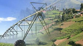 Food Security and Sustainability: Crop production course image