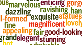 Adjectives and Adjective Clauses course image