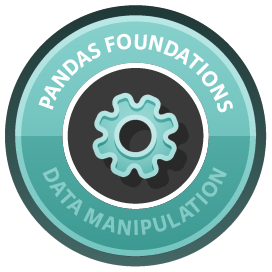 pandas Foundations course image