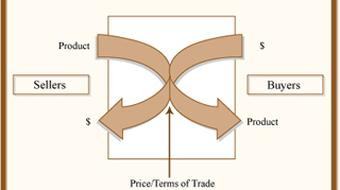Economic Analysis for Business Decisions course image