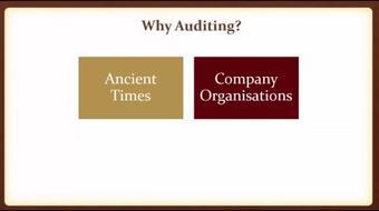Auditing Basics (Professional Course Level) course image