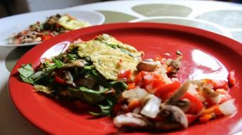 How To Make a Great Tasting Veggie Omelet course image
