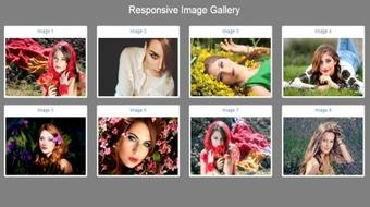 Responsive Image Gallery with Bootstrap From Scratch course image