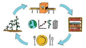 Sustainability of Food Systems: A Global Life Cycle Perspective course image