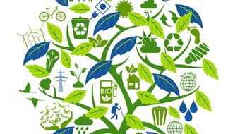 Comprendre l'écologie, pour une économie innovante course image