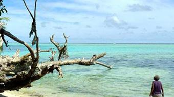 Tropical Coastal Ecosystems course image