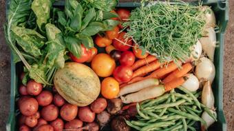 Invisible Hunger: Food Insecurity and Food Banks course image