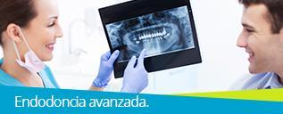 Endodoncia Avanzada (2.ª edición) course image