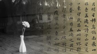 Classics of Chinese Humanities: Guided Readings course image