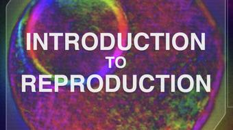 Introduction to Reproduction course image