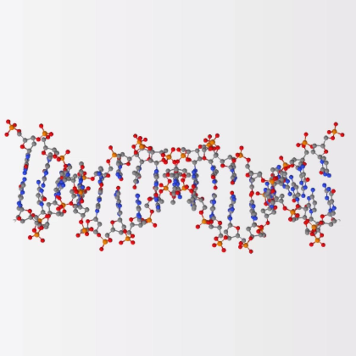 Генетика (Genetics) course image