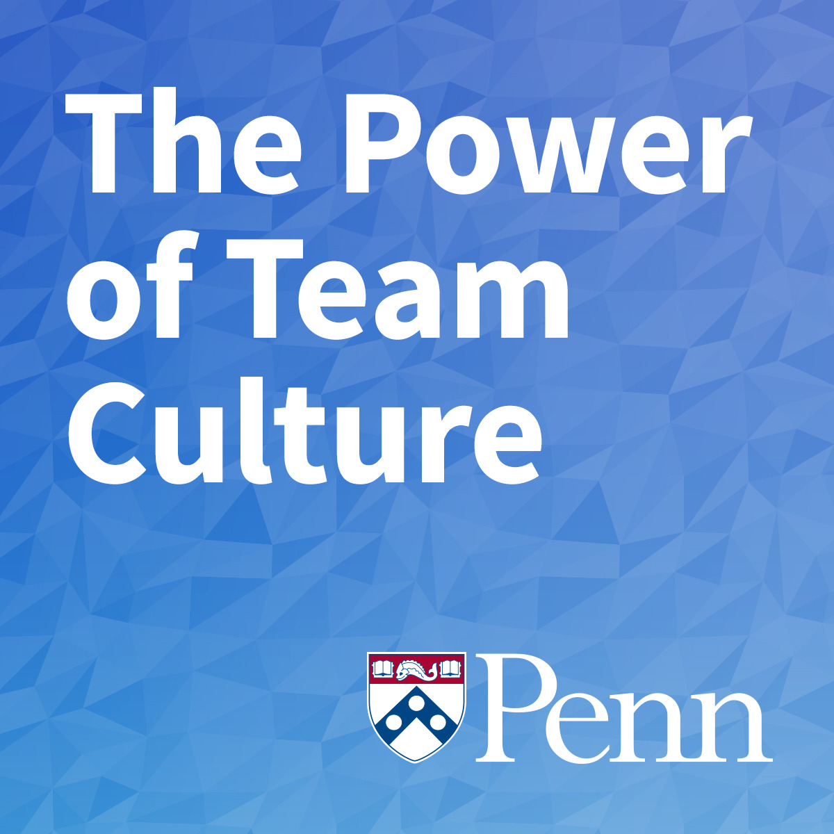 The Power of Team Culture course image