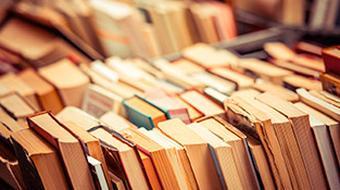 Introducción a Literatura II course image