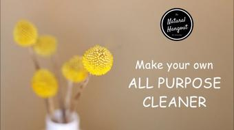 The Natural Hangout - Make your own All Purpose Cleaner course image