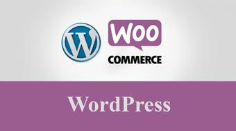 Learn How to Build an E-Commerce Website by WordPress course image