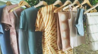 Natural Dyeing: Transform Cloth Using Food Dyes with The Dogwood Dyer course image