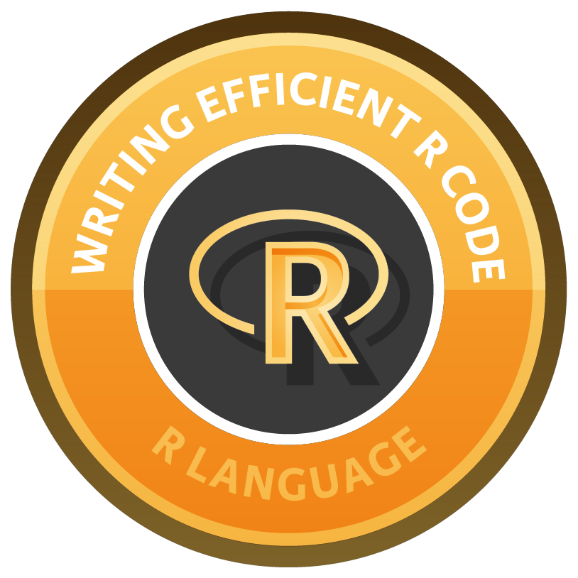 Writing Efficient R Code course image