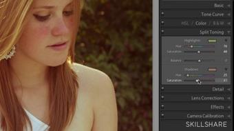 Fundamentals of Lightroom II: Editing and Post Processing course image