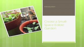 Create a Small-Space Edible Garden course image