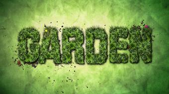 Nature-Inspired Text Effects in Adobe Photoshop course image