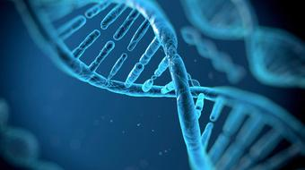 Cancer in the 21st Century: the Genomic Revolution course image