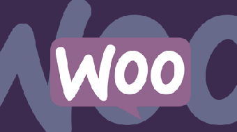 Go Further With WooCommerce Themes course image