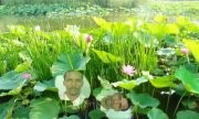 Wedefit Miressa profile image