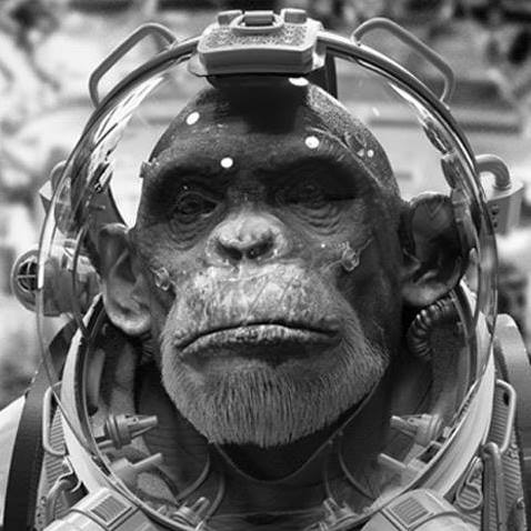 JL Meana profile image