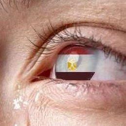 وليد غنيم profile image